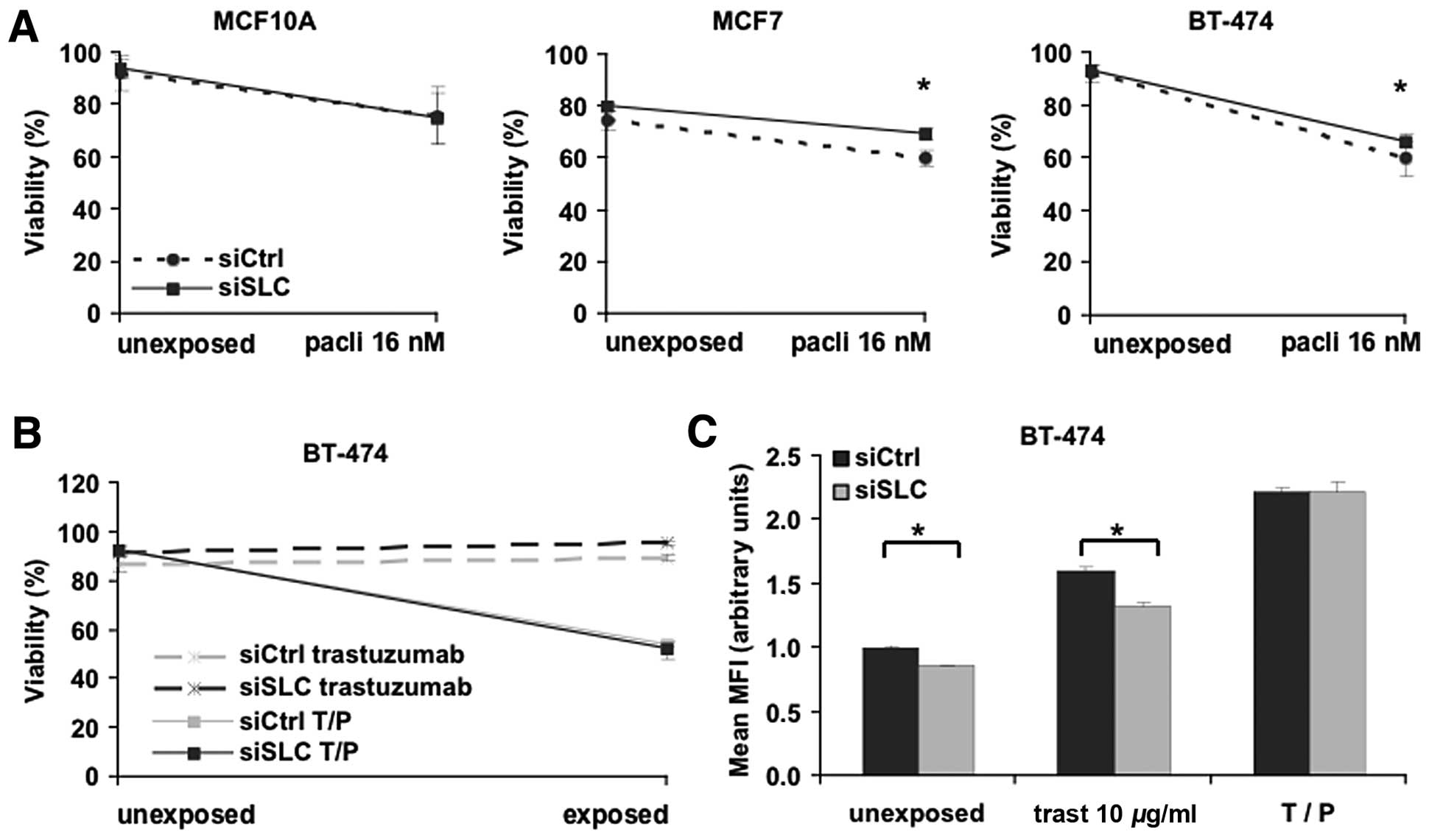 The Mitochondrial Transport Protein Slc25a43 Affects Drug Efficacy