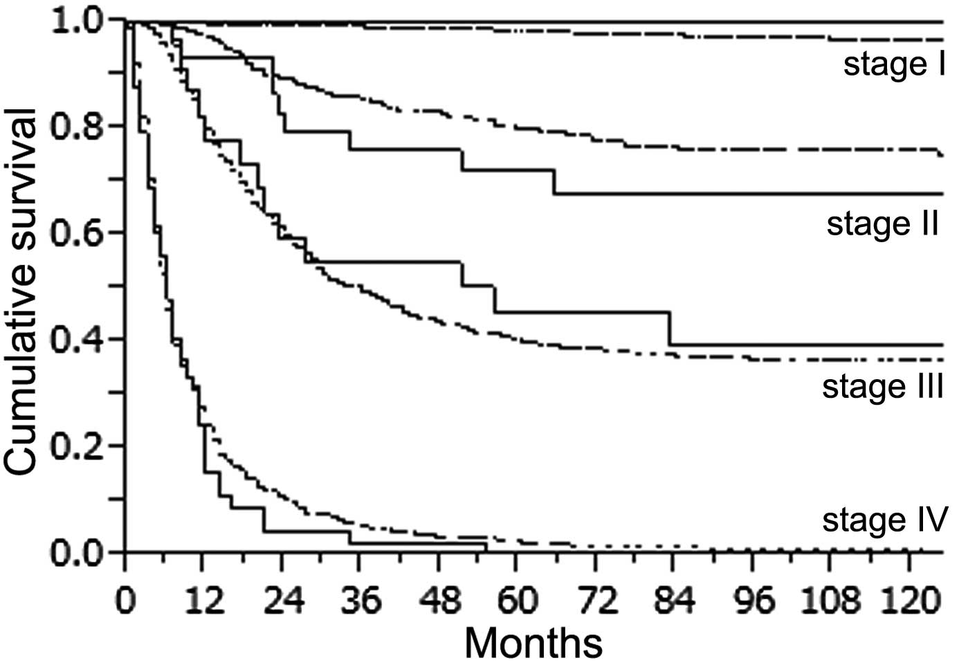 Characteristics And Prognosis Of Gastric Cancer In Young Patients