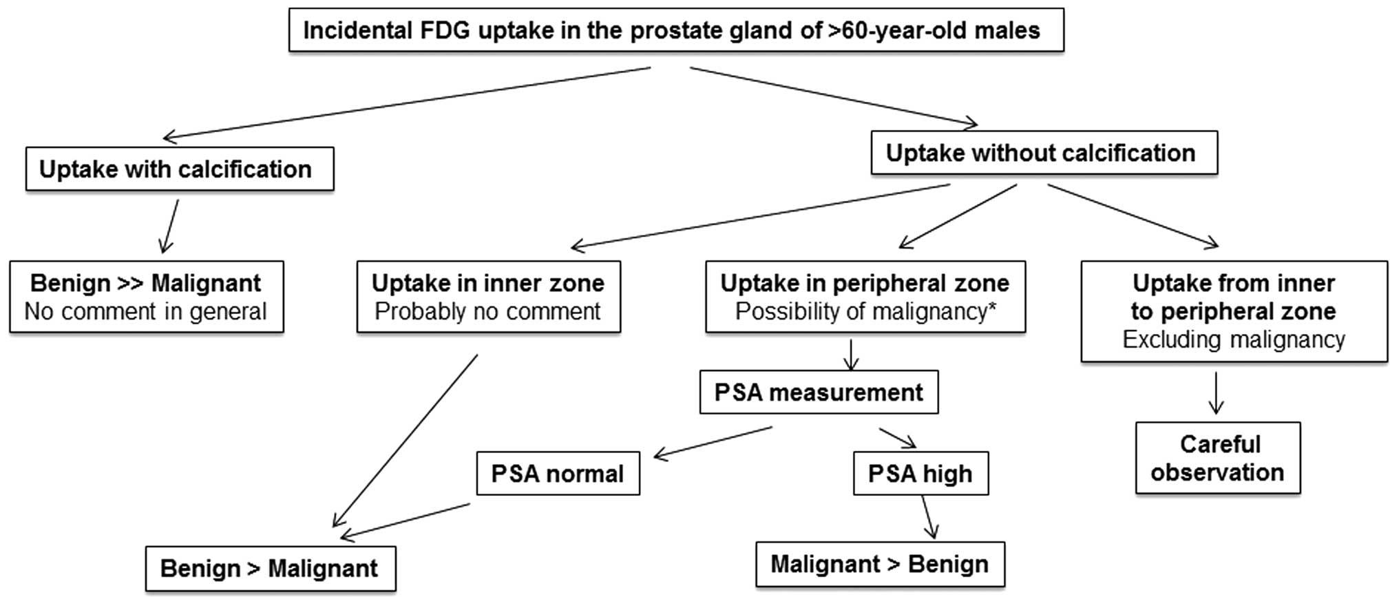 Incidental Prostate 18f Fdg Uptake Without Calcification Indicates