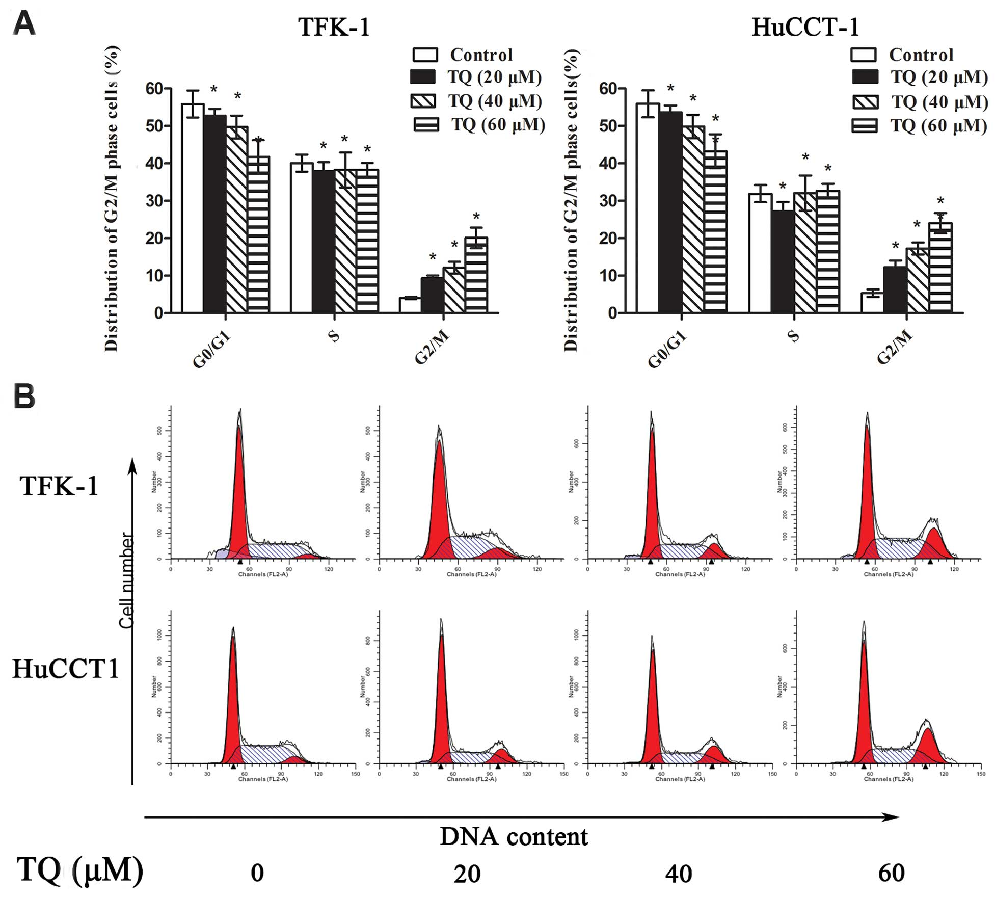 Thymoquinone induces G2/M arrest, inactivates PI3K/Akt and