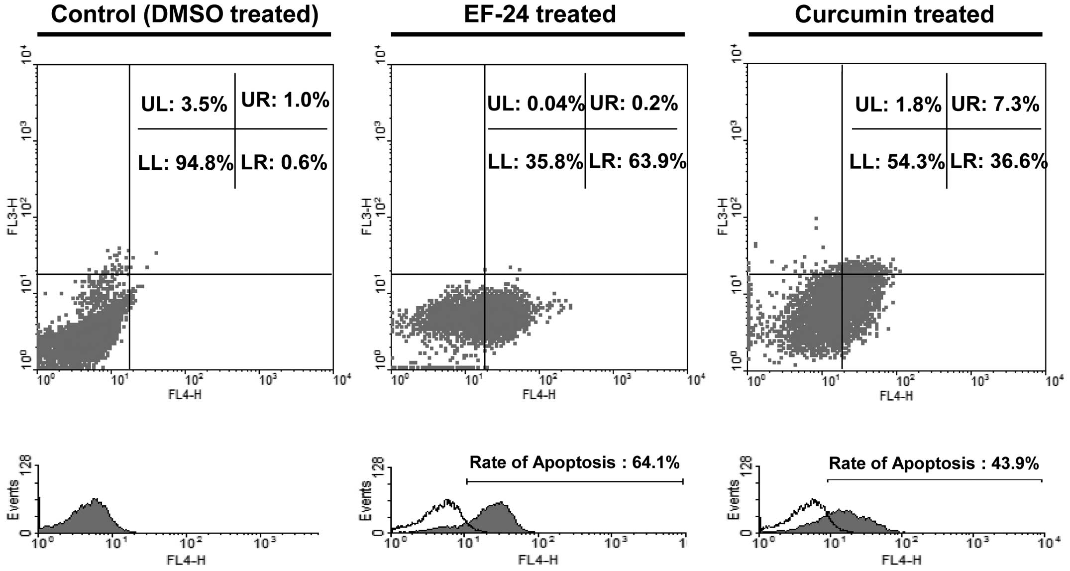ffe8a639b9e5 Apoptotic population induction of Saos2 cells by EF-24 and curcumin. To  identify the EF-24- or curcumin-induced Saos2 cell apoptosis