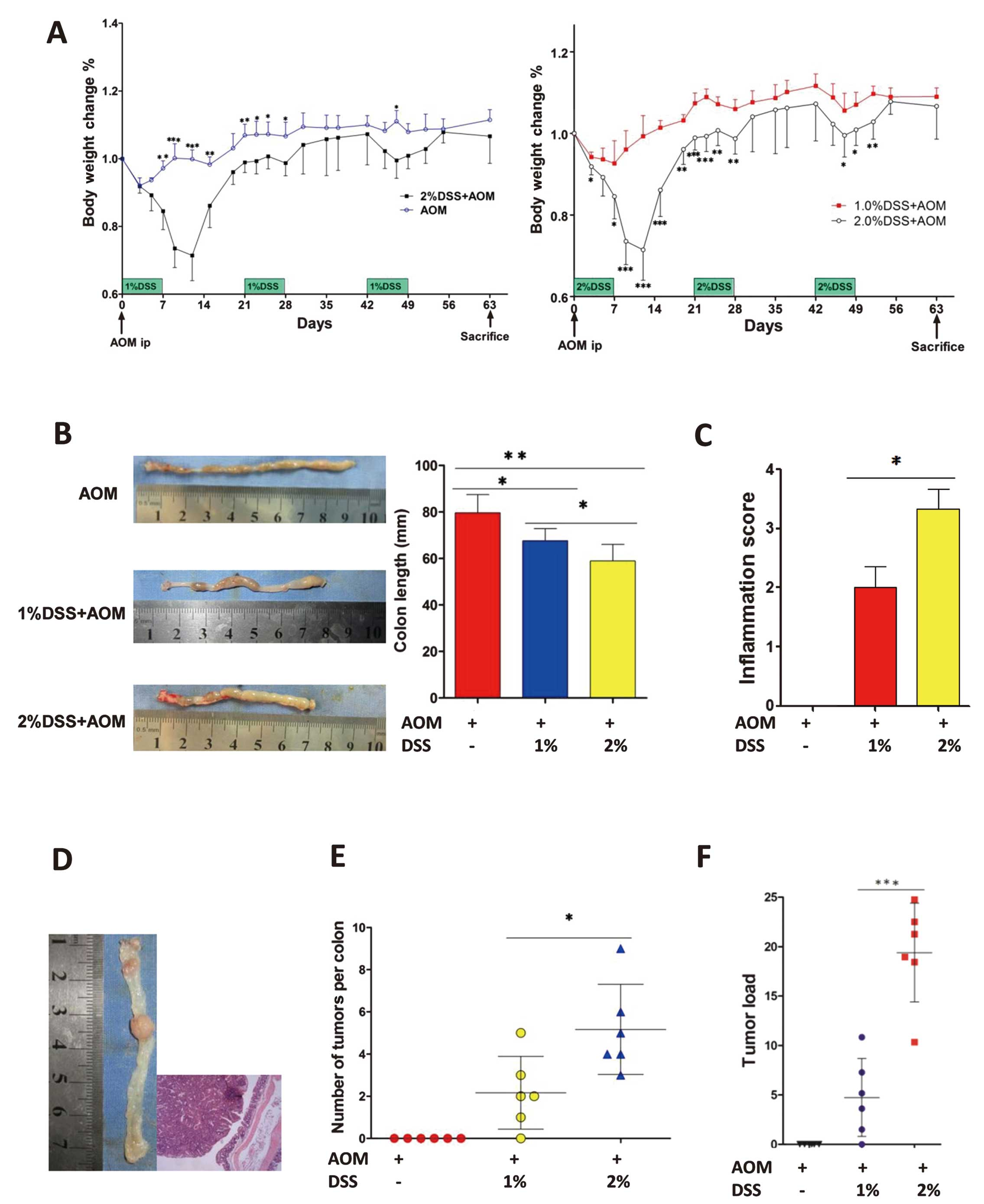 Activation Of The MTORC1 And STAT3 Pathways Promotes The