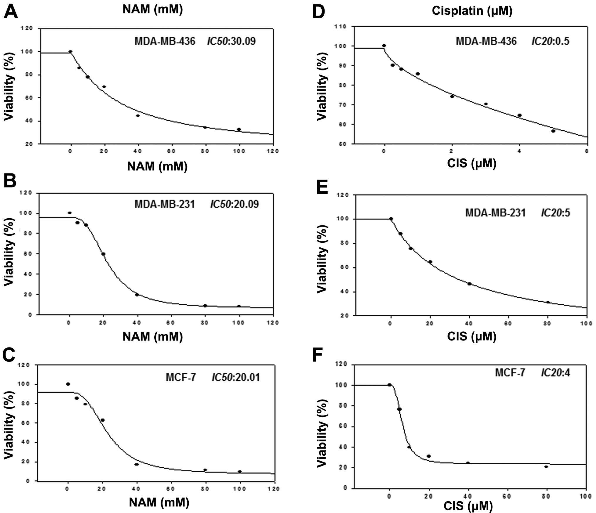 Nicotinamide sensitizes human breast cancer cells to the cytotoxic