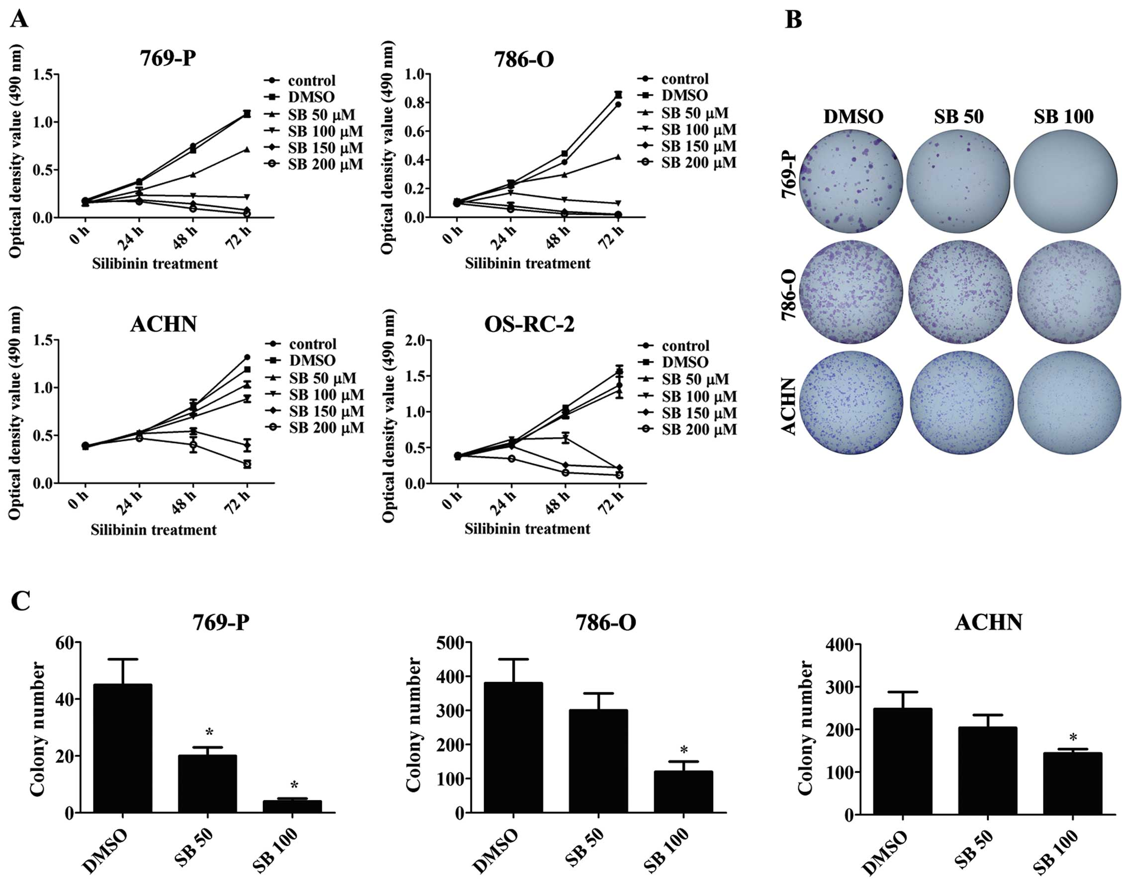 Silibinin induces apoptosis through inhibition of the mTOR-GLI1-BCL2