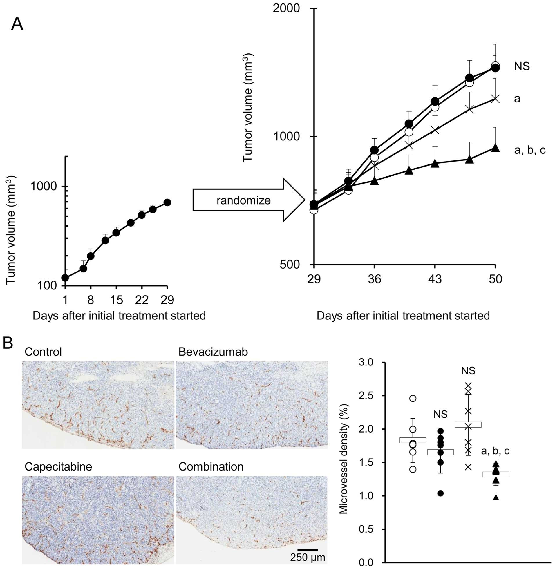 Continuous Administration Of Bevacizumab Plus Capecitabine Even After Acquired Resistance To Bevacizumab Restored Anti Angiogenic And Antitumor Effect In A Human Colorectal Cancer Xenograft Model