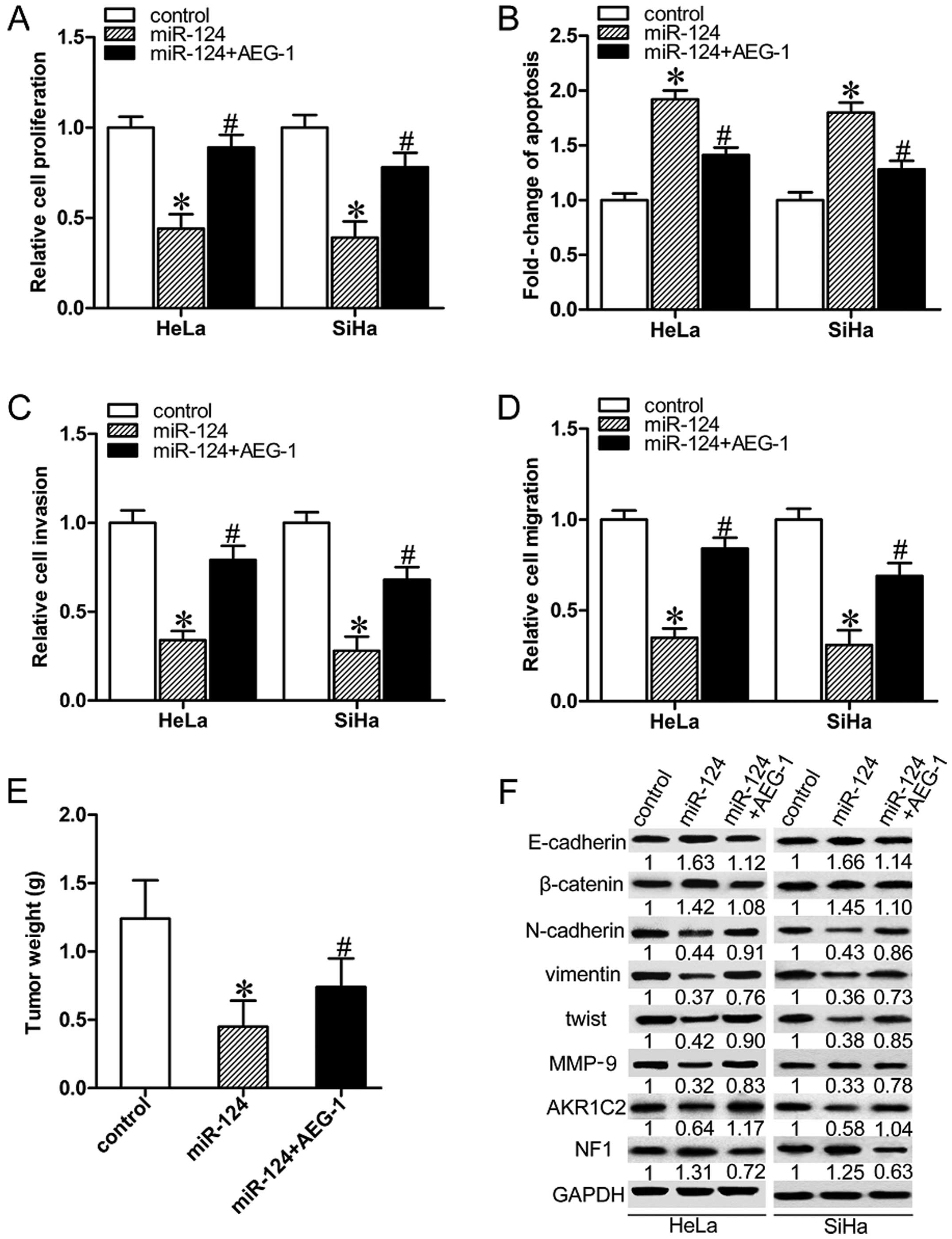 MicroRNA-124 inhibits proliferation, invasion, migration and ...