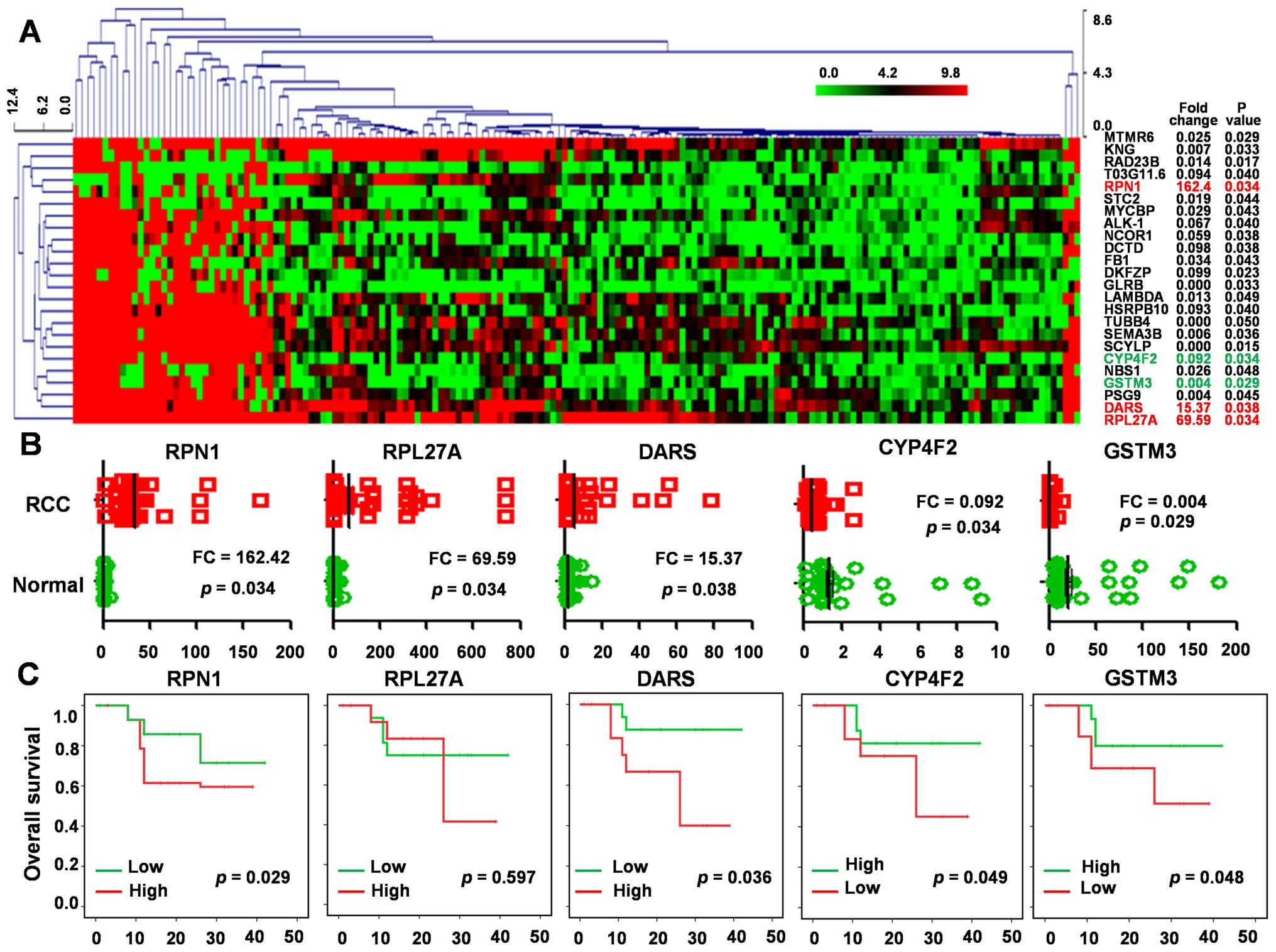 Validation Of Potential Prognostic Factors From Dysregulated Expression Proteins A Clustering Analysis Was Performed Using The MEV 471 Based On 24