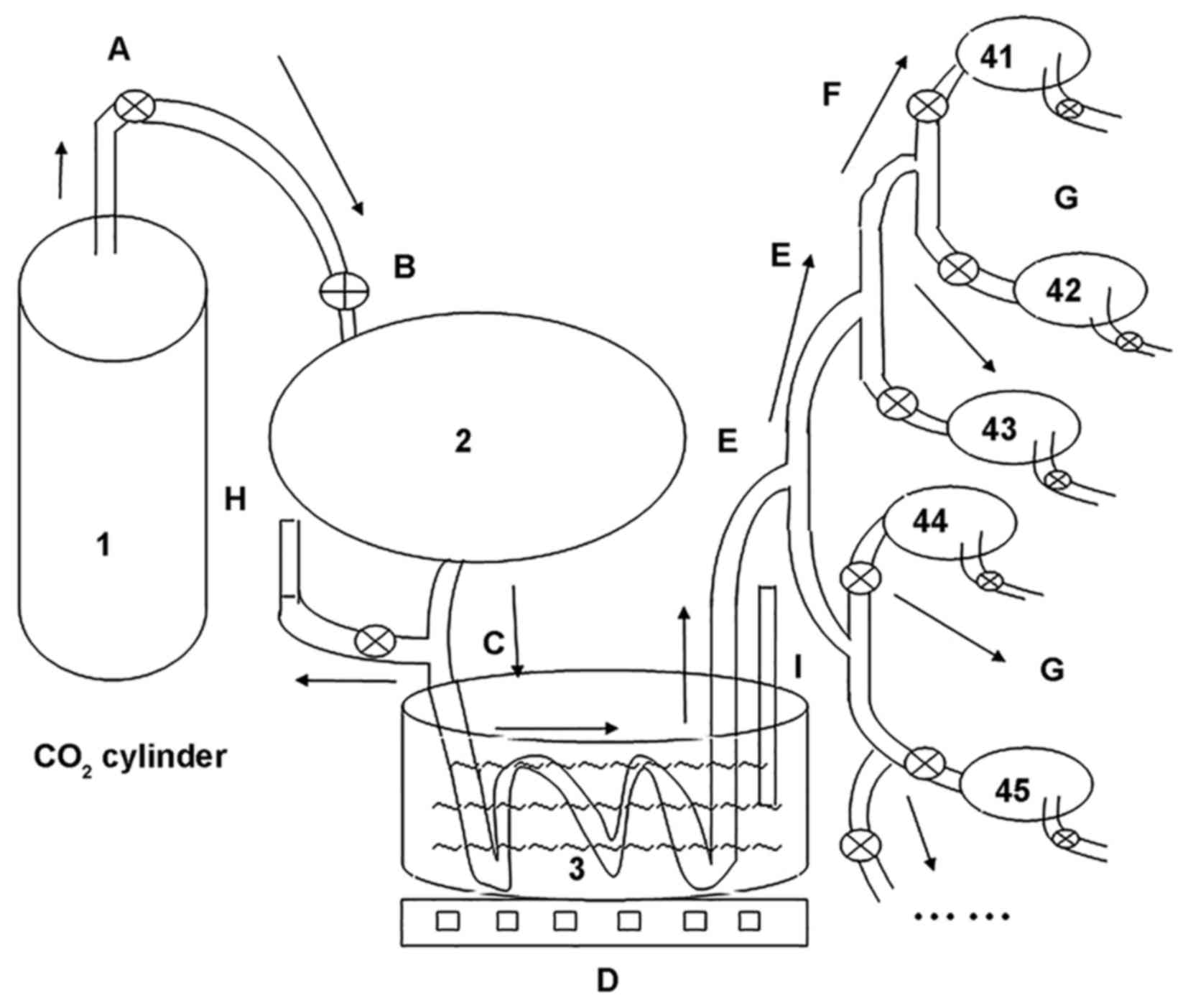 fisher valve diagram bing images