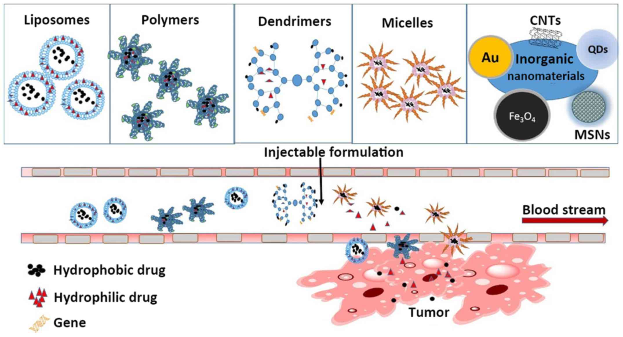 Cancer Drug Delivery In The Nano Era An Overview And Perspectives 1973 Evinrude 135 Wiring Diagram Figure 2 Nanomaterials Used As Carriers For Therapy With Their Distinct Biological Characteristics Can Improve Enhanced
