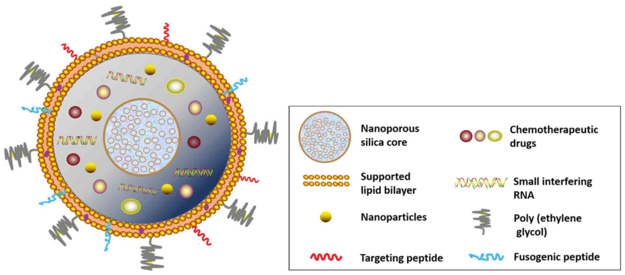 Cancer drug delivery in the nano era: An overview and perspectives