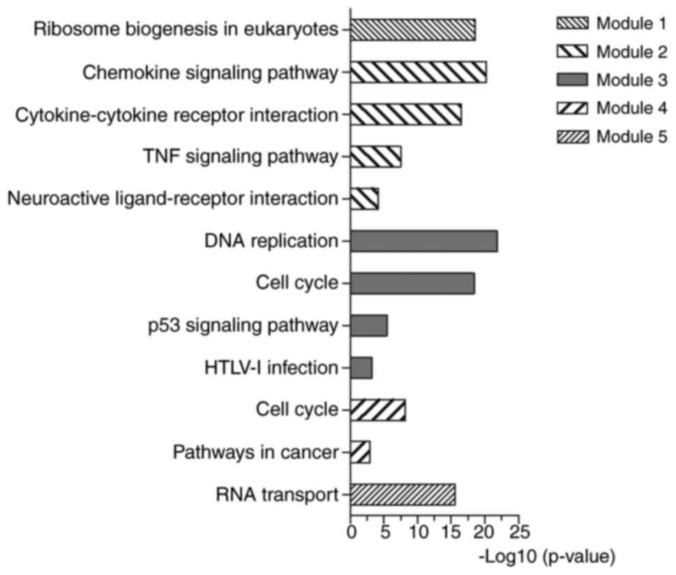 Identification of hub genes, key miRNAs and potential