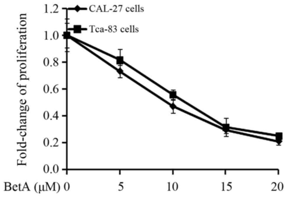 Figure 1. CAL-27 cells and Tca-83 cells were exposed to different dose of BetA, and cell proliferation were measured with MTT assay.