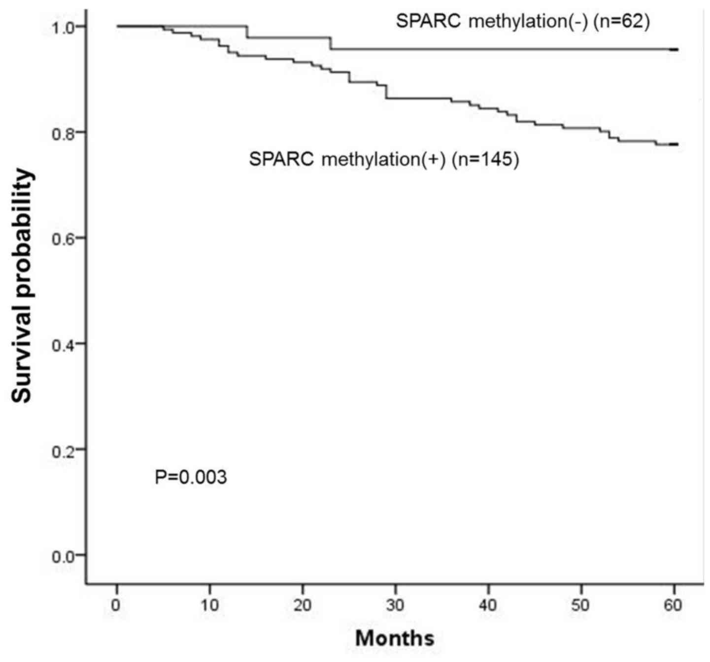 Hypermethylation of the SPARC promoter and its prognostic value for