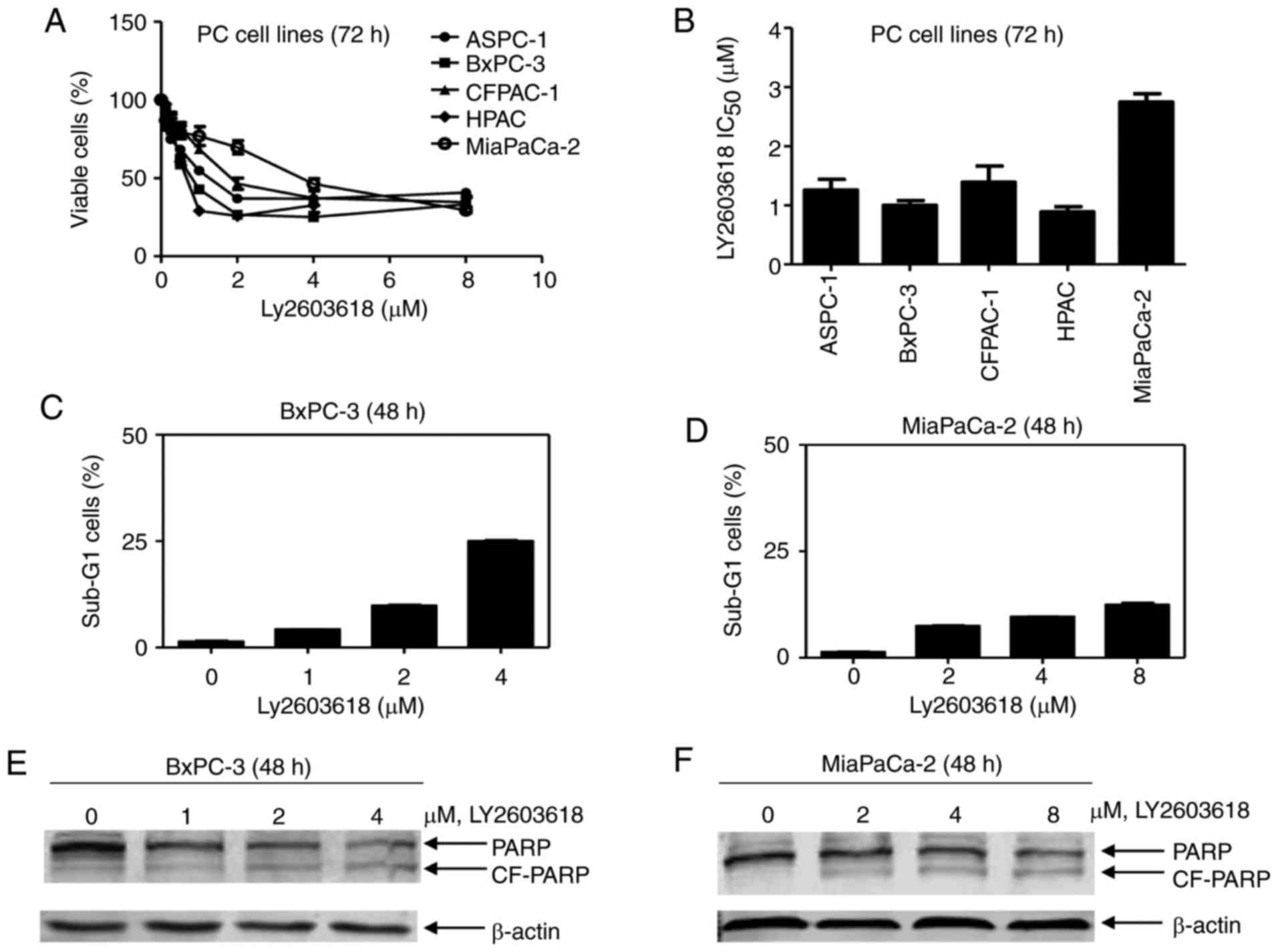Chk1 Inhibition Sensitizes Pancreatic Cancer Cells To