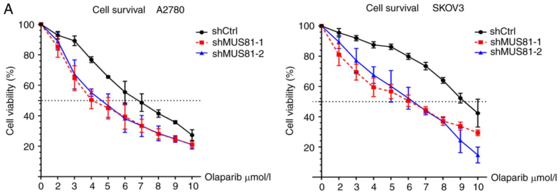 Inhibition Of Mus81 Improves The Chemical Sensitivity Of Olaparib By Regulating Mcm2 In Epithelial Ovarian Cancer