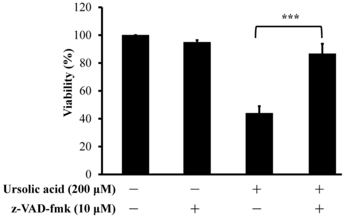 b7775500f0 Effects of the pan-caspase inhibitor z-VAD-fmk on the apoptotic death of  ursolic acid-treated CAR cells. Cells were pretreated in the presence or  absence of ...