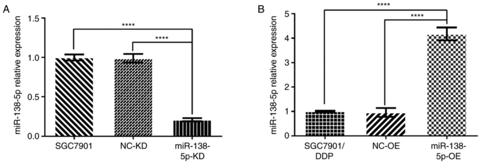 miR‑138‑5p modulates the expression of excision repair cross