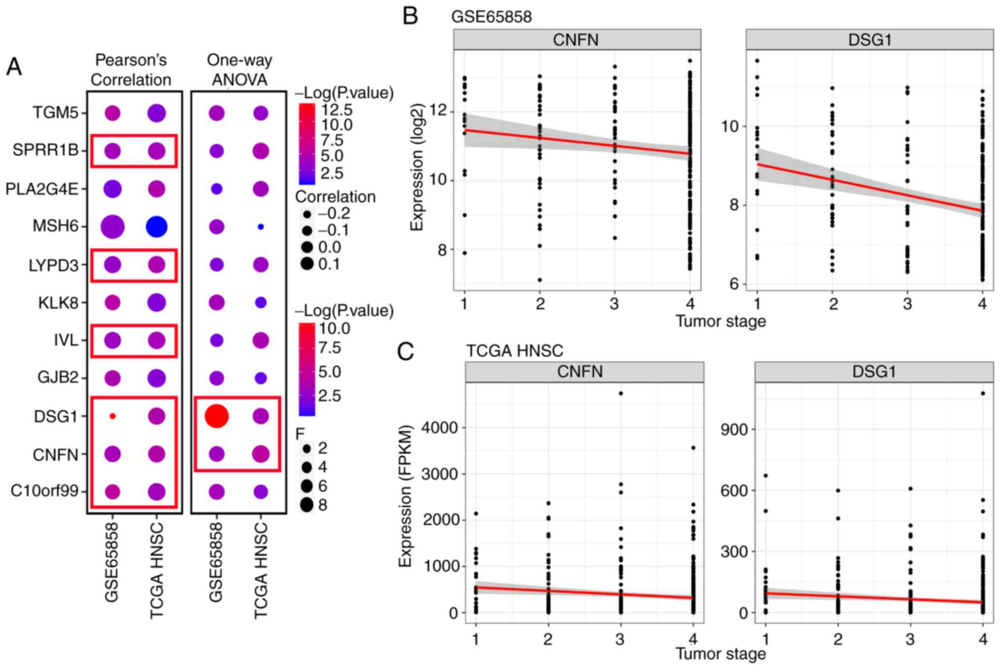 Analysis of gene co‑expression network reveals prognostic