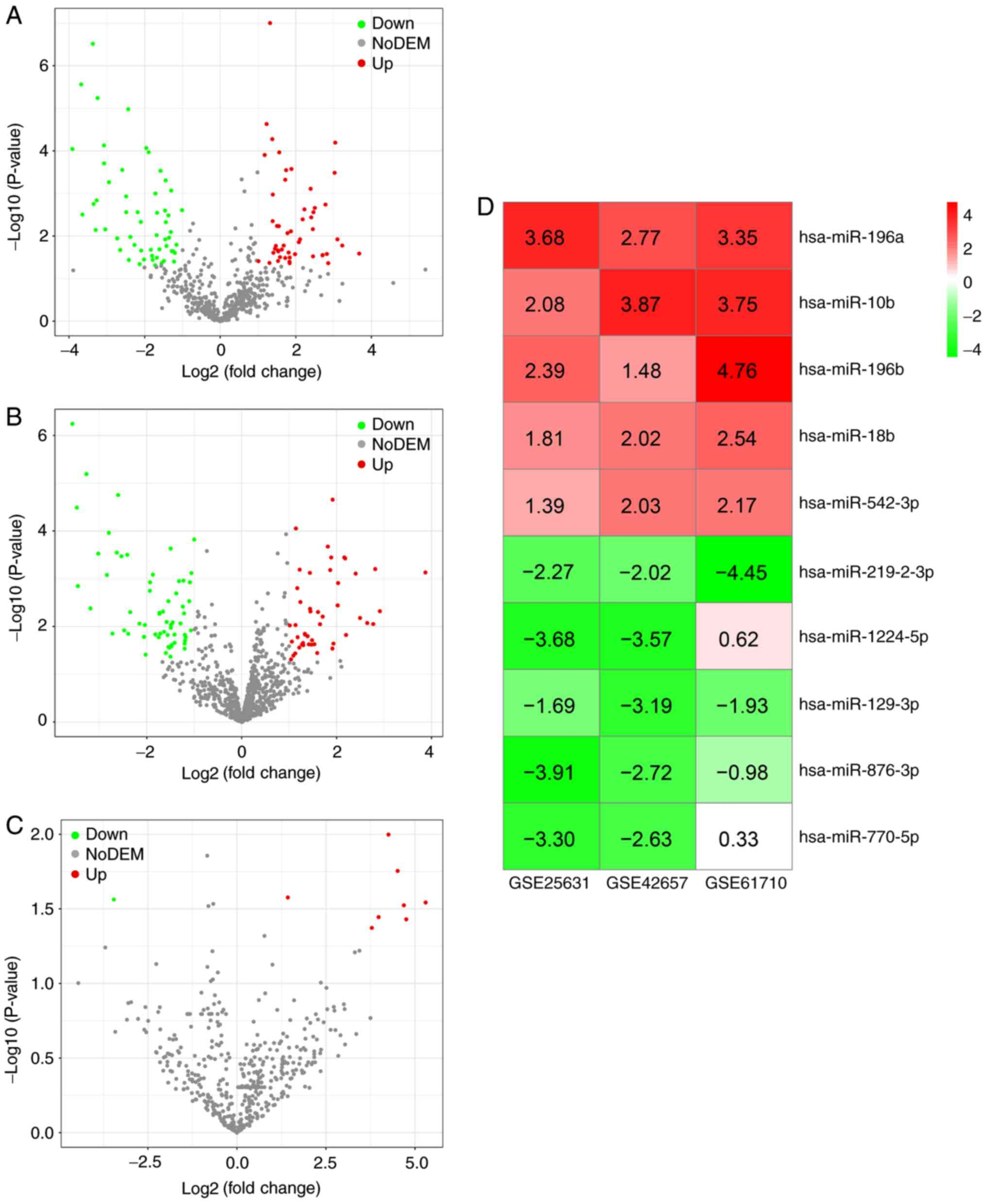 In silico analysis identified miRNA‑based therapeutic agents against