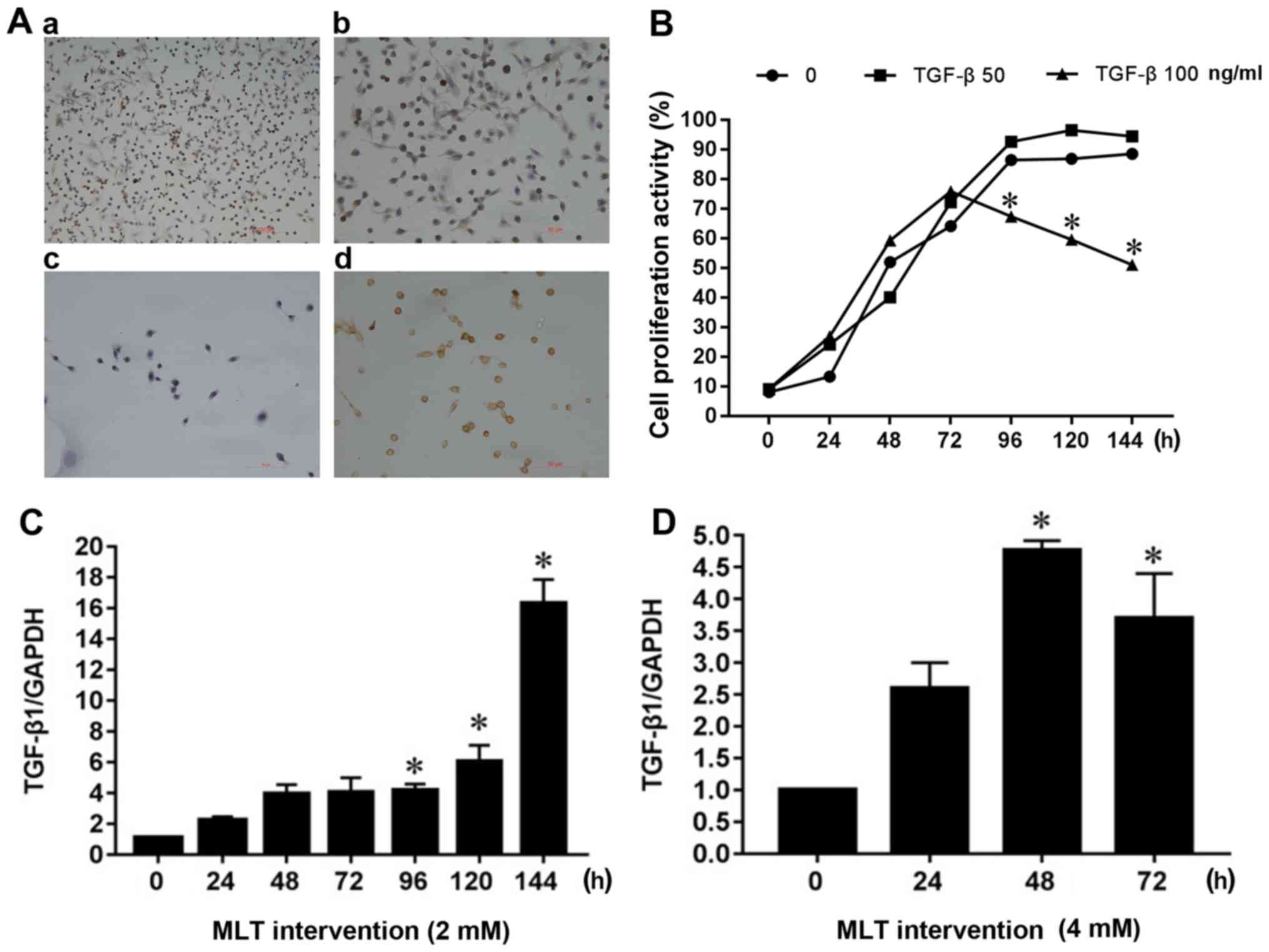 Role of transforming growth factor β1 in the inhibition of