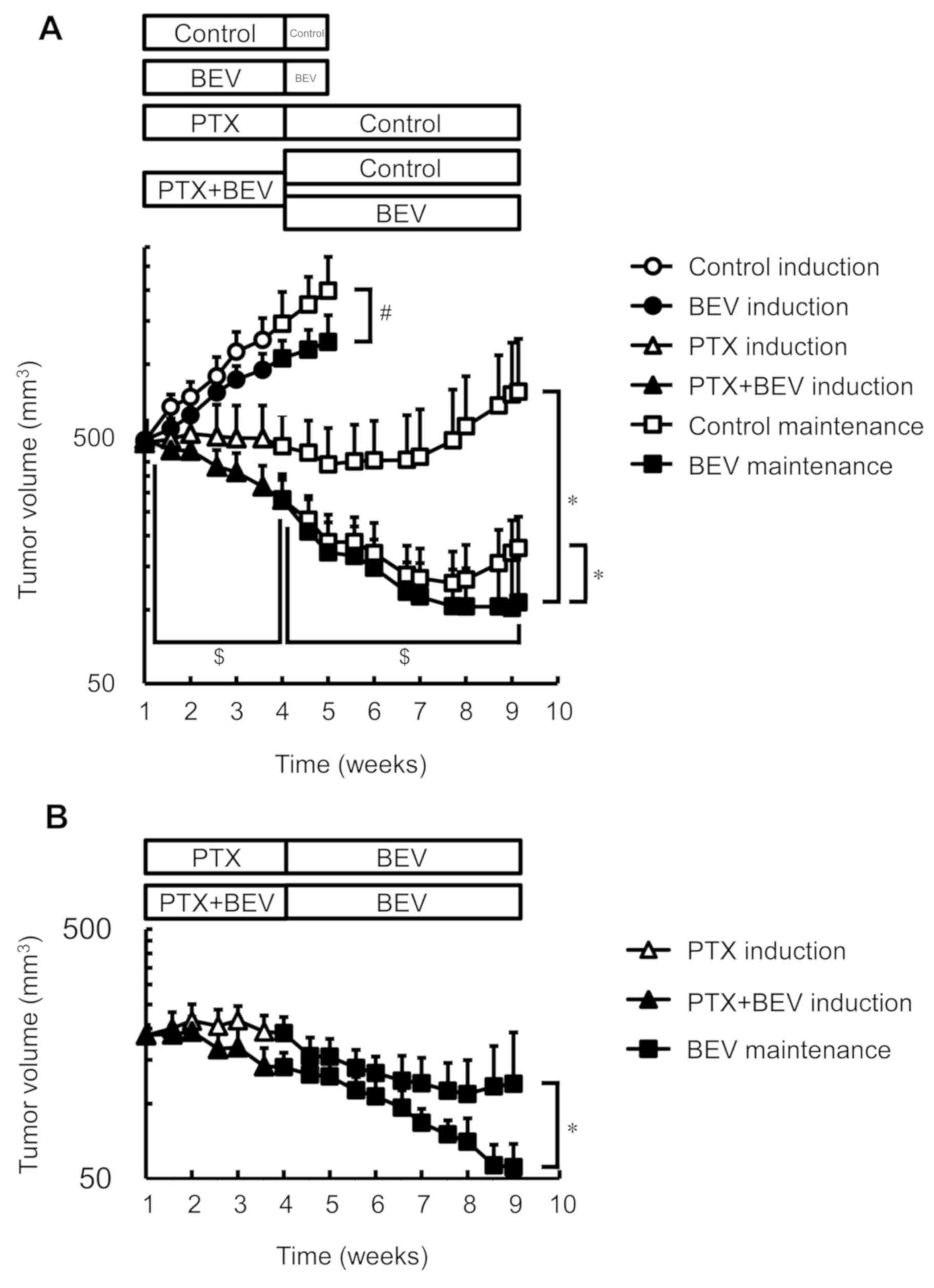 Sustained Effect Of Continuous Treatment With Bevacizumab Following Bevacizumab In Combination With Chemotherapy In A Human Ovarian Clear Cell Carcinoma Xenograft Model