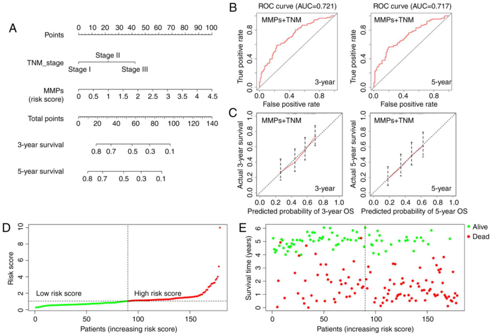 Upregulated Expression Of Mmp Family Genes Is Associated With Poor Survival In Patients With Esophageal Squamous Cell Carcinoma Via Regulation Of Proliferation And Epithelial Mesenchymal Transition