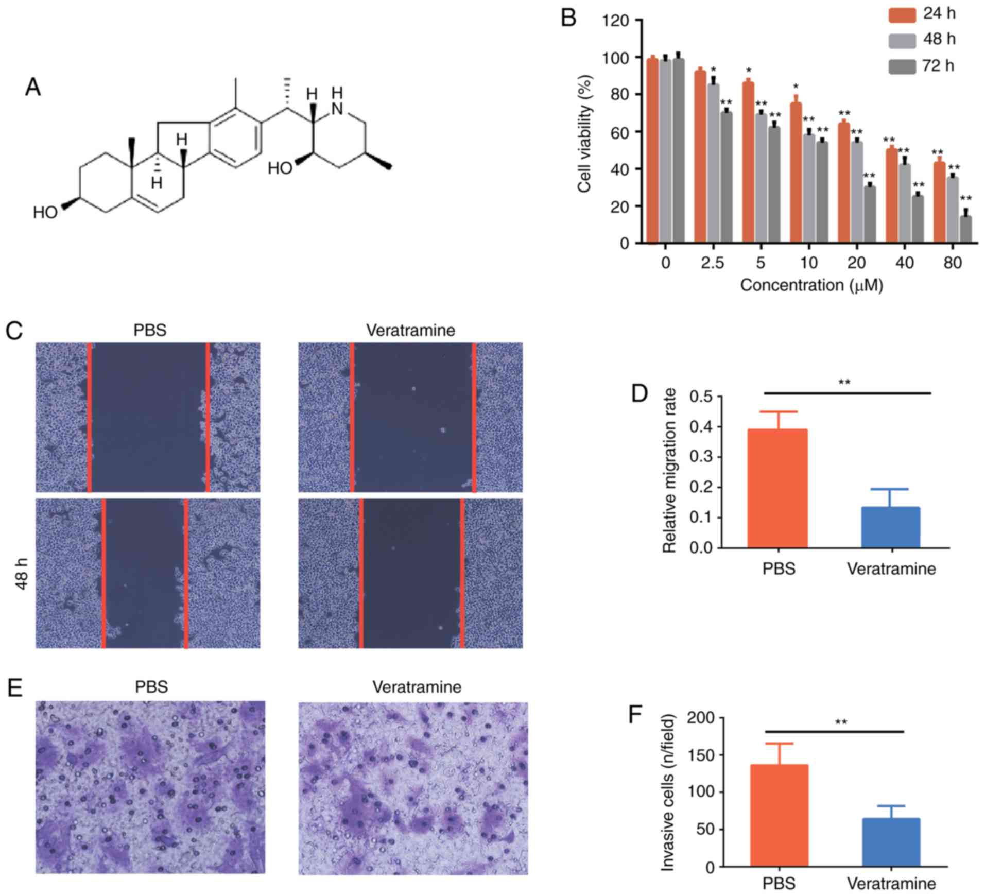 COMP promotes the proliferation of HCC cells in vitro and