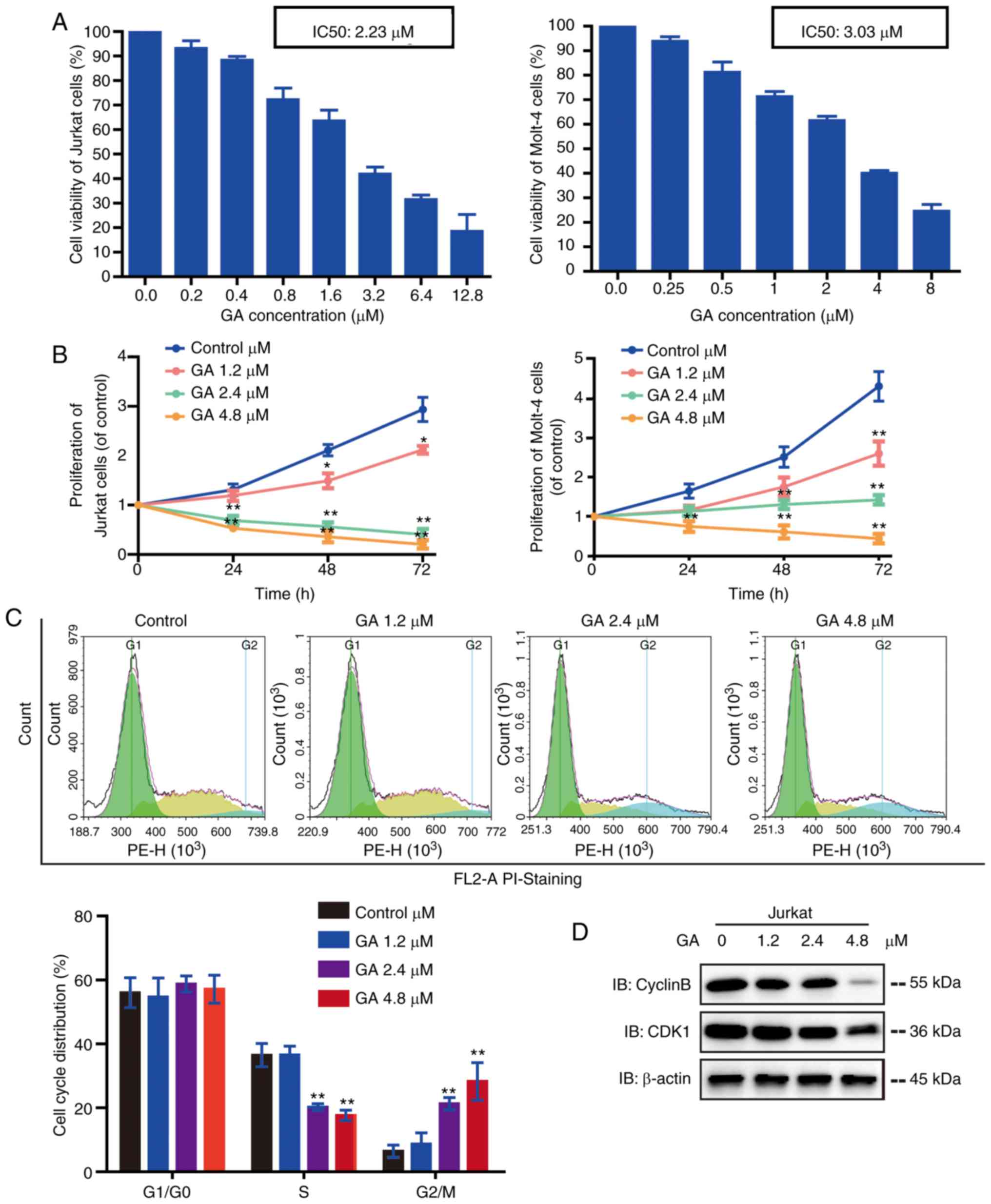PDia3 sirna inhibits cell proliferation. Notes: hl-60 and